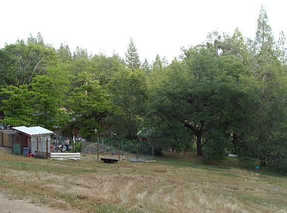 tem09-farm+trees2517